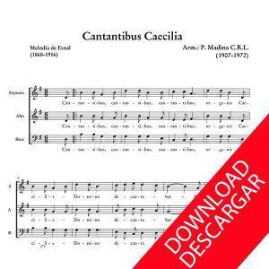 cantantibus_caecilia