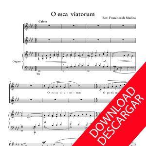 o_esca_viatorum